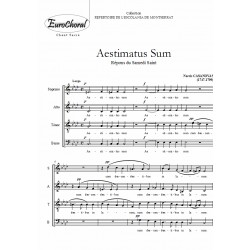 AESTIMATUS SUM (Casanovas)