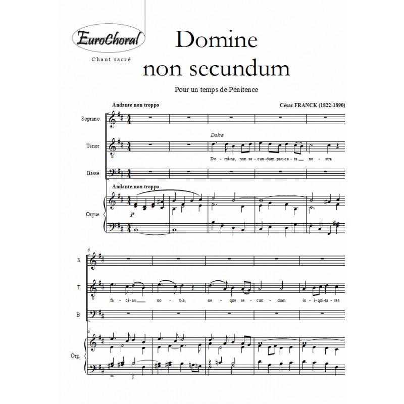 DOMINE NON SECUNDUM