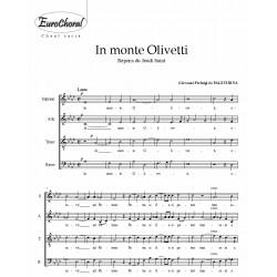 IN MONTE OLIVETTI (Palestrina)