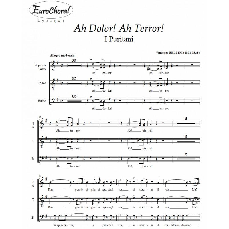 AH DOLOR! AH TERROR! (Bellini)
