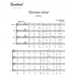 NORMA VIENE  (V.Bellini)