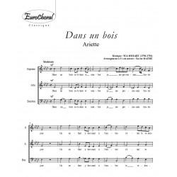 DANS UN BOIS (W.A Mozart)