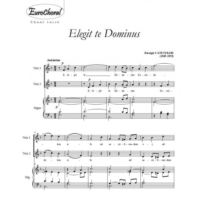 ELEGIT TE DOMINUS (D.Canestrari)