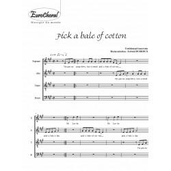 Pick a bale of cotton (Traditionnel américain)